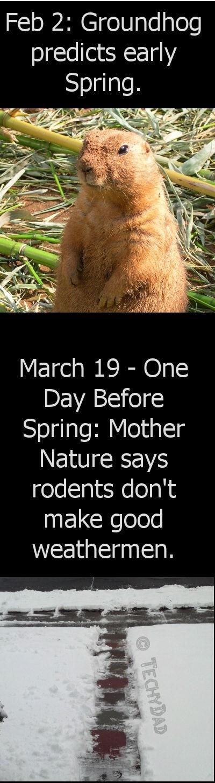 groundhog vs mother nature