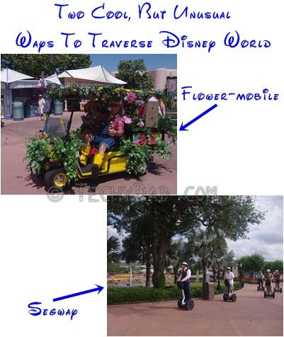 ww-traveling-disney