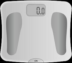 body_scale