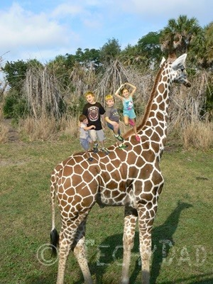 Kids On A Giraffe